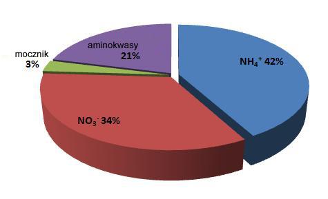 Rysunek 5. Budżet azotowy dla kolonii Stylophora pistillata w jej naturalnym środowisku. Wyraźnie widać, że jony amonowe i azotany stanowią wyraźną większość budżetu azotowego. Azot organiczny w postaci aminokwasów stanowi 21%. Jednak balans pomiędzy pomiędzy rozpuszczonymi molekułami, a cząstkami jak np plankton zależy od dostępności w danym momencie (Renaud Grover et al, Journal of Experimental biology 2008).