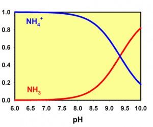 amoniak a pH