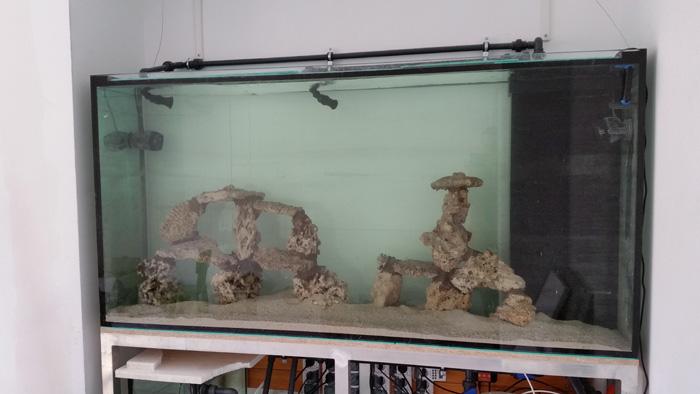 wykrystalizowana woda w akwarium