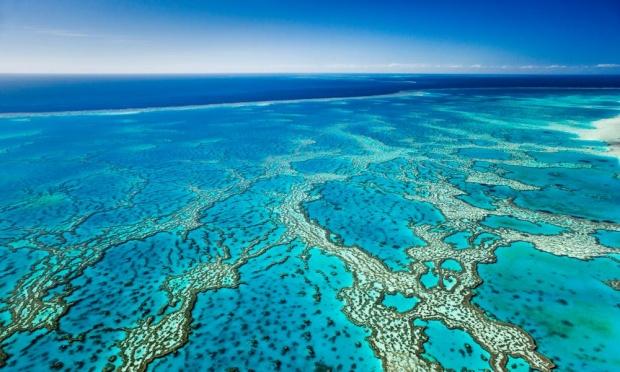 Debata UNESCO na temat Wielkiej Rafy Koralowej