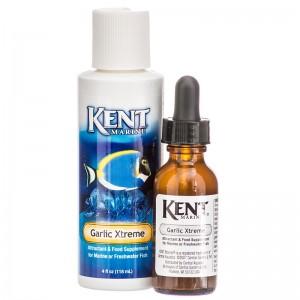 kent-marine-garlic-xtreme (1)