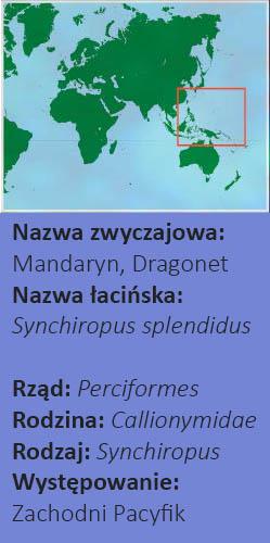 Mandaryn Mapa